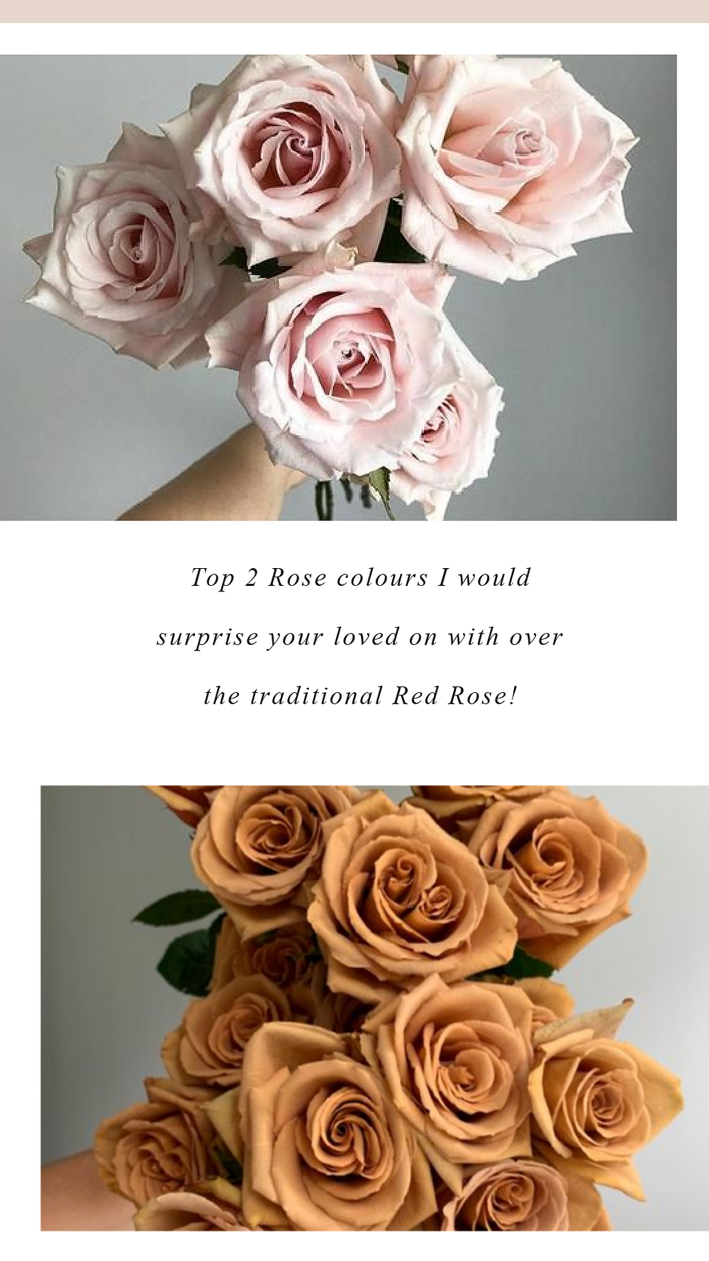 Roses are perfect for Valentines Day, Especially the Toffee Roses and Quicksand Roses