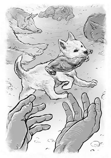 kapheus_spirit_wolf_wolves