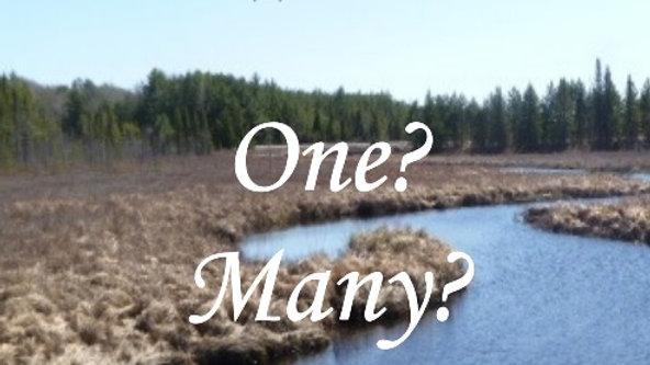 Baptisms - One? Many? Or Both?