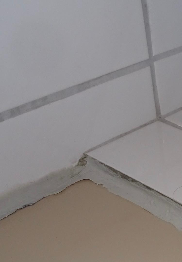 Nicht funktionstüchtige Silikonfuge im Duschbereich.