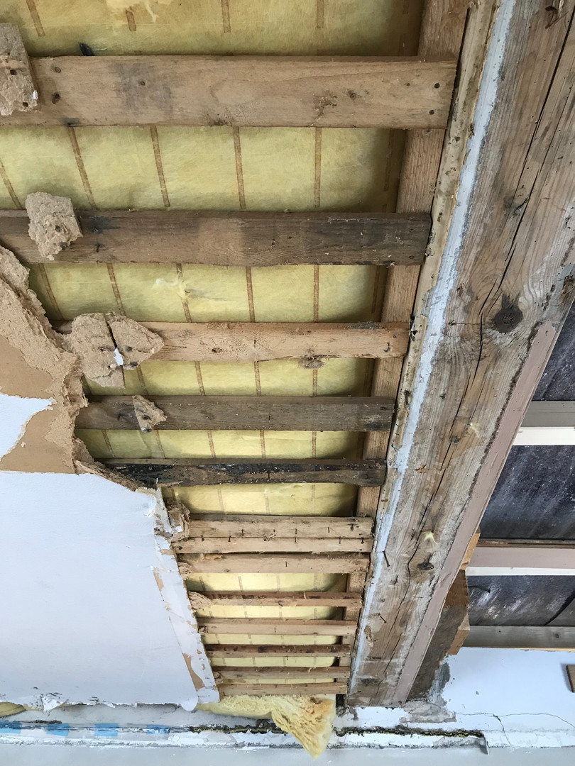 Mit Schimmelpilz und Feuchtigkeit belastete Dachkonstruktion.