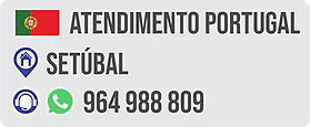 phone_portugal.png