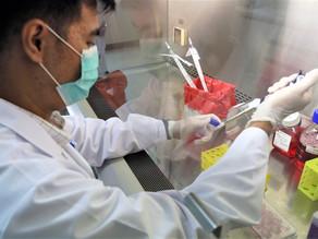 JAPON APRUEBA EL USO DE SALIVA EN LAS PRUEBAS PARA DETECTAR EL CORONAVIRUS EN PERSONAS ASINTOMÁTICAS