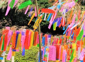 "FESTIVAL JAPONES ""TANABATA"" (7 de julio)"