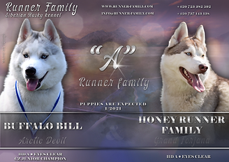 a_runnerfamily.png