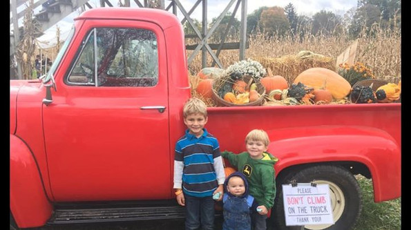 The Docimo boys at the corn maze outing