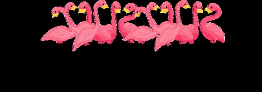 download-Flamingo-png-transparent-images