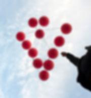 Stray Bird 6.jpg