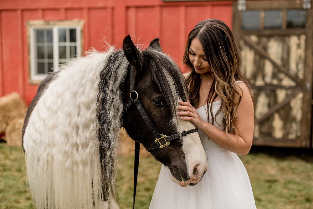 A bride pets a horse in front of rustic traveling wedding venue, Tentwood barn. | My Snohomish Wedding | Snohomish Wedding Planning