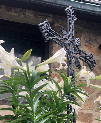 crosses and lilies.png