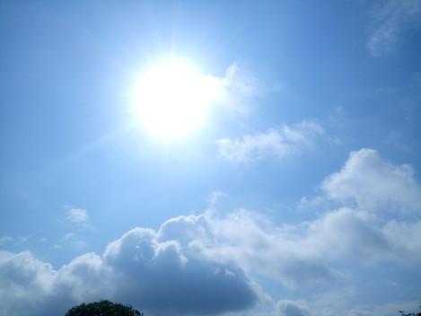 Happy Sunny Friday!