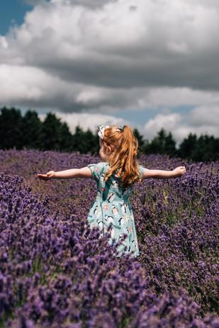 Lavender Feld Photoshoot.jpg