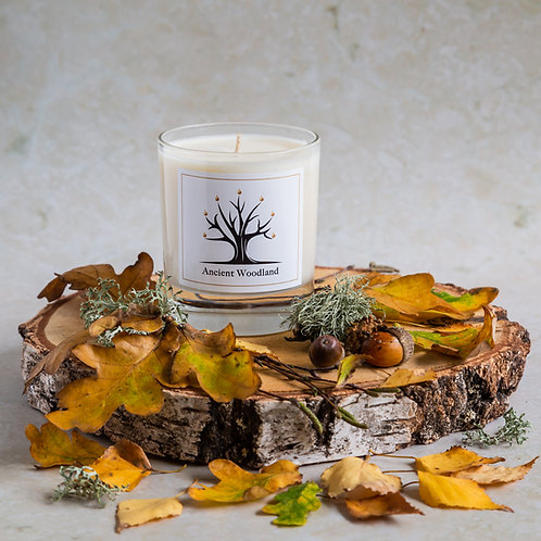 Ancient Woodland Candle