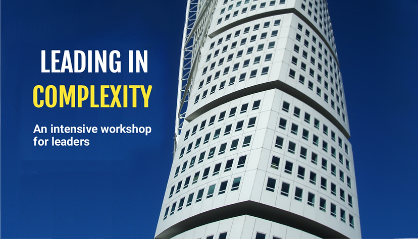Leading in Complexity workshop banner