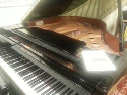 箕面市 ピアノ教室 リトルピアニスト