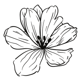 S.O.S._Blomst.png
