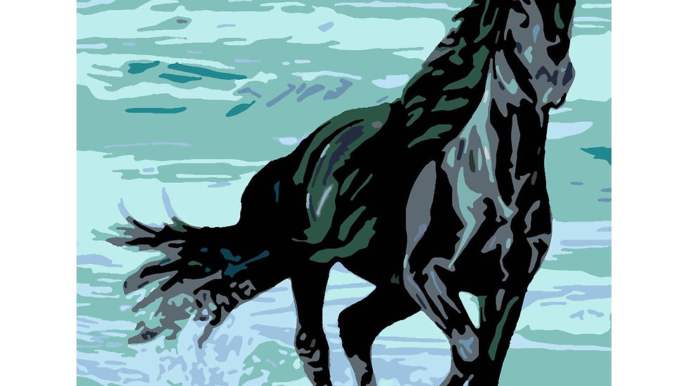 Stallion paint by numbers kit