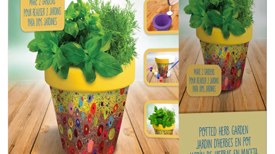 DIY Potted herb garden