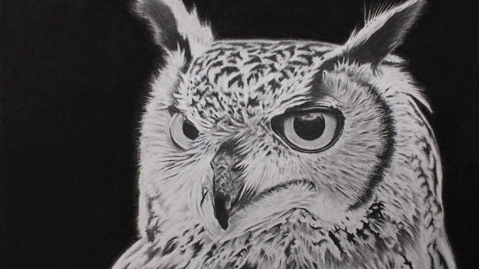 Advanced Drawing: Photorealism in Graphite March 18th