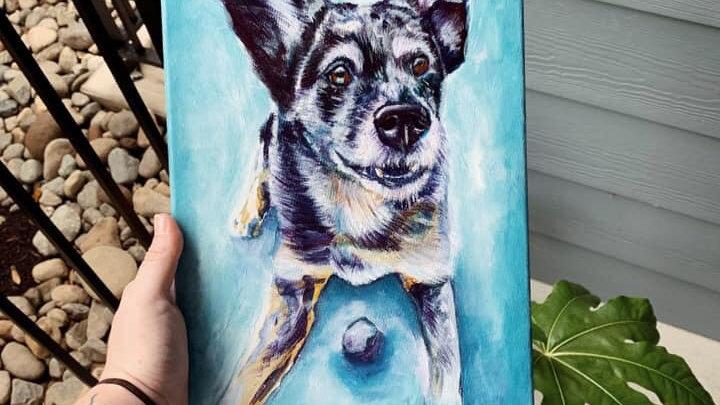 Pet portraits February 7th