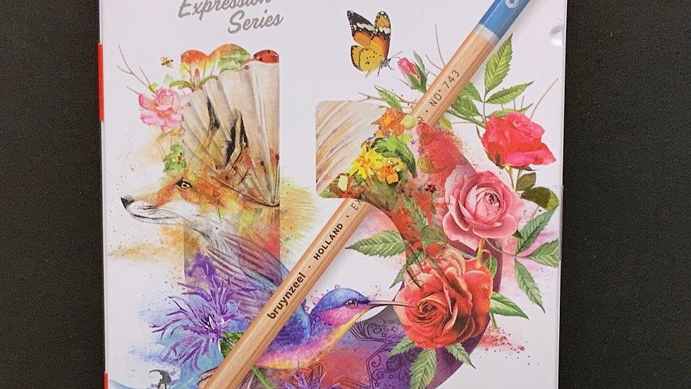 Bruynzeel Expression Series - 12 x Colour Pencils
