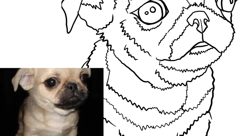 Pet portrait kit for kids : Lisa Joan Rendition