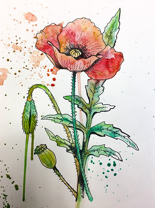Water colour pen and ink September 23rd