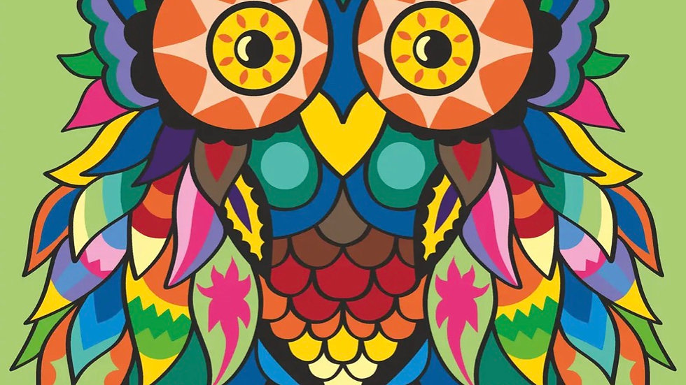 Colourful owl paint by numbers