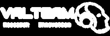 Logo Valteam - Red.png