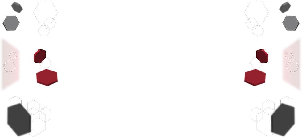 HEXAGONOS imagen 2. jpg.jpg