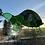 Thumbnail: Tortoise