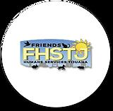 FHSTJ.png