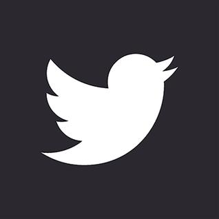 Twitter Logo (Grey)