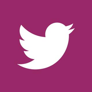 Twitter Logo (Pink)