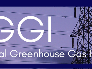 The Regional Greenhouse Gas Initiative (RGGI) is back in New Jersey.