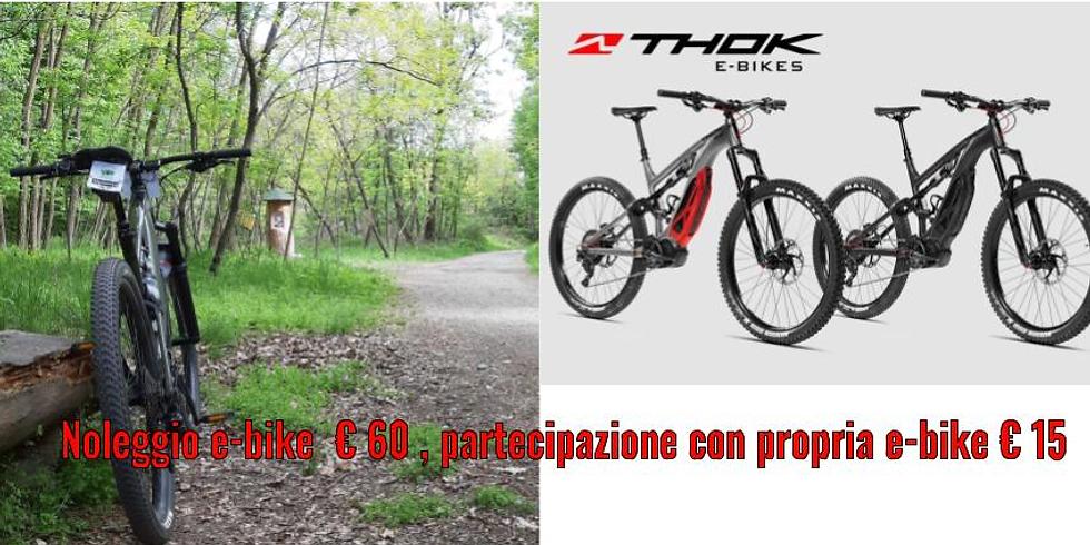 Tour in E-bike nel Parco della Mandria