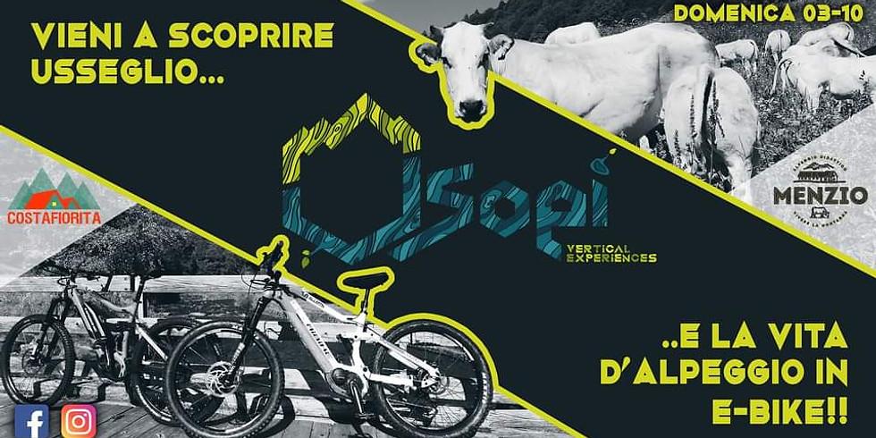 E-Bike tour agli alpeggi di Usseglio