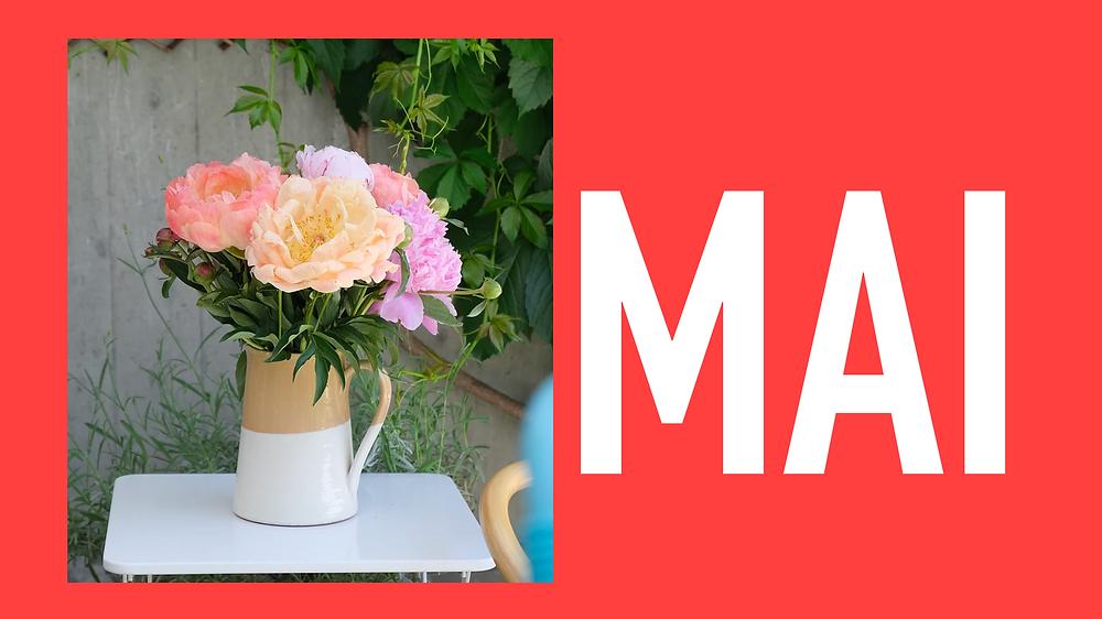 Saisonkalender Mai Blumenpost Schweiz