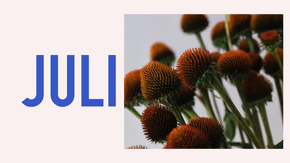 Saisonkalender Juli Blumenpost Schweiz