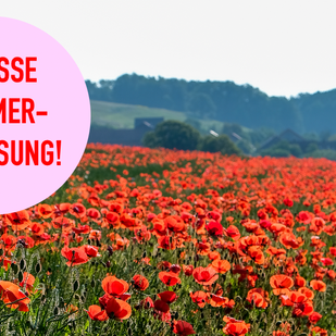 Unsere grosse Sommerverlosung!