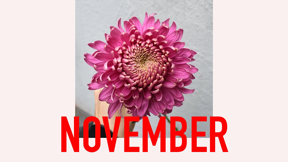 Saisonkalender November Blumenpost Schweiz