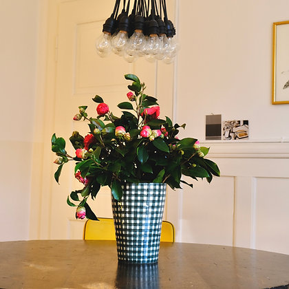 Kamelien Tessin Bestellen online Blumenpost liefern saisonal Blumenstrauss