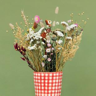 Trockenblumen: Die neue Kollektion ist da!