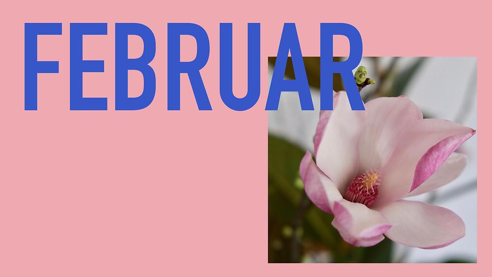 Saisonkalender Februar Blumenpost Schweiz