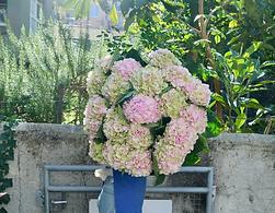 Blumenabo Blumenpost Geschenkidee Geburtstag