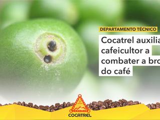Cocatrel auxilia cafeicultor a combater a broca do café