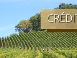 Crédito Rural: conheça os impactos das recentes medidas governamentais
