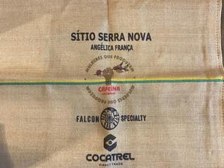 Cafeína Cocatrel: cafeicultura feminina do Sul de Minas para o mundo