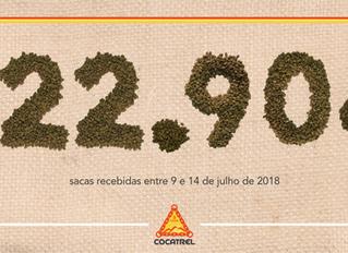 Cocatrel tem semana histórica de recebimento de café