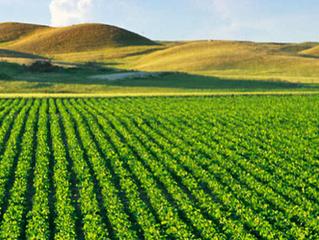 Agende-se para a aquisição e recebimento de fertilizantes